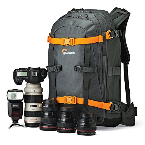 Lowepro Whistler BP 350 Backpack for Camera – Grey Online