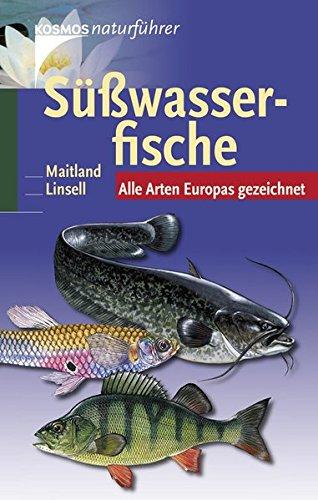 Süßwasserfische: Alle Arten Europas gezeichnet
