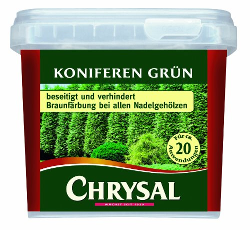 coniferes-de-vert