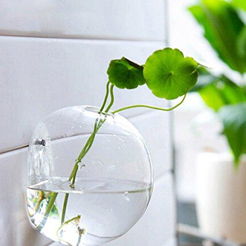 Sharplace vaso pensili bottiglia per pianta fiore vetro trasparente attaccatura di parete decorazione glass wall hanging vase bottle