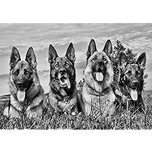 Amazing–Póster de perro pastor alemán (6)–, diseño de cachorro de perro con Lovely–Nueva–Póster de mejor calidad mejor imagen–Mejor Precio–Tamaño A3