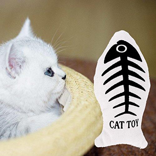 FURU Katzenminze Cat Toys, interaktives Katzenspielzeug Fisch Kratzbaum mit Catnip für Innen-Kätzchen (Cat-nip-fisch)
