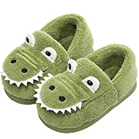 Hu.S.Ye Home Slippers Toddler House Slipper for Girls Boys Warm Winter Slippers Kids Infant Dinosaur Memory Foam Shoes