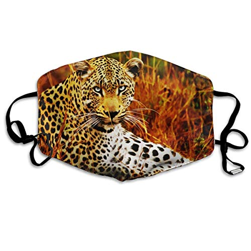 Monicago Einzigartige Unisex-Mundmaske, Gesichtsmaske, Cool Leopard Brave Picture Polyester Anti-dust Masks - Fashion Washed Reusable Face Mask for Outdoor ()