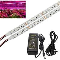 XJLED strisce LED 0,5 m, da 5 W, flessibili, per piante, SMD5050 + XJLED adattatore AC 100-240V a DC 12 V 6 A, 2,1 mm x 5,5 mm Plug