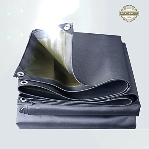 Li Li Na Shop Thick Outdoor Canvas Wasserdichte Sonnenmarkise Regendicht und Wärmedämmung Schuppen Linoleum Auto-LKW-Schatten Tuch Isolierung Baldachin (Color : Silver, Size : 300cm*600cm)