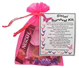 Best Gifts For Sisters - Sister Survival Kit Gift Review