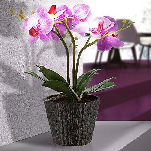 LED Orchidee Blumentopf Pflanze Beleuchtung Blume Blüten Blätter Globo 28003 - 2