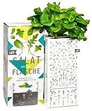 Bottlecrop - Salat aus der Flasche | Eichblattsalat | in Flasche | Einzugsgeschenk | Anzuchtsystem | Urban Farming | Geschenkidee | Hydrokultur | Pflanzen ohne Erde| Kräuter Fentsterbank | Kräutergarten Fenster| vertikaler Garten | nachhaltig |