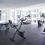 CAPITAL SPORTS Azura 2 X-Bike Ergometer Heimtrainer für Ausdauertraining und Cardio (3kg Schwungmasse, 8-stufiger Widerstand, faltbar, max. 100 kg, mit Trainingscomputer) in schwarz blau - 2