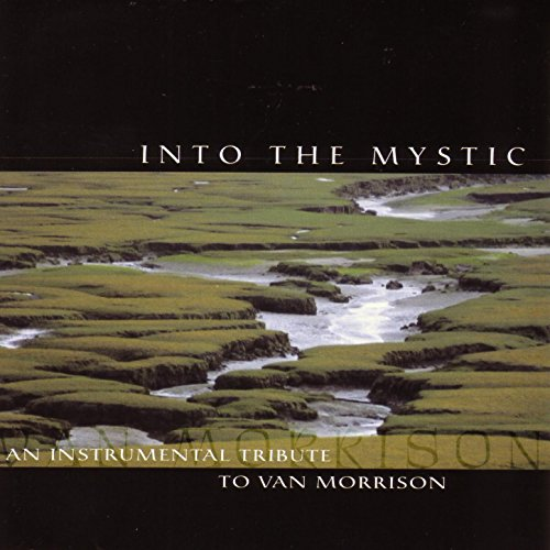 Into The Mystic - An Instrumen...