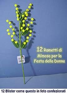 12 RAMETTI DI MIMOSA Confezionati Singolarmente Festa della Donna