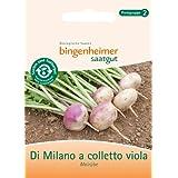Mairübe Di Milano a coletto viola