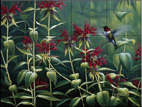 Fliesenwandbild - Rubin Throat Hummingbird und Monarda - von Wilhelm Goebel - Küche Aufkantung/Bad Dusche (Hummingbird Bad)