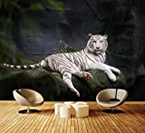 Premium Vliestapete Weißer Tiger sitzt in der Höhle Fototapete DA00001027 Vliestapete XXL XXL 400 x 280 cm - 8 Teile - Vlies