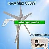 Gowe Wind Generator 400W mit 5Klingen, max POWER 600Watt + Wind Solar Hybrid Controller (für 600W Windkraftanlage + 300W Solar Panel)