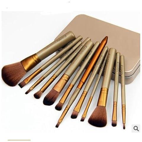 Y&HY&L Set di pennelli trucco cosmetici pennello 12 strumenti di bellezza scatola di ferro