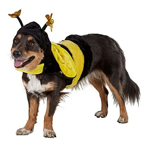 TOP Marques Collectibles Top Paw Bee Dog Verkleiden Halloween-Kostüm Klein