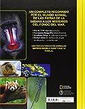 Image de Enciclopedia De Los Animales (NG KIDS)