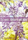 Es rankt, klettert und blüht (Wandkalender 2020 DIN A3 hoch): Eine Auswahl besonderer Kletterpflanzen für Ihren Garten (Monatskalender, 14 Seiten ) (CALVENDO Natur)