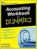Accounting Workbook For Dummies (UK Edition)
