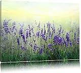 Schöner Lavendel im Regen Format: 120x80 auf Leinwand, XXL riesige Bilder fertig gerahmt mit Keilrahmen, Kunstdruck auf Wandbild mit Rahmen, günstiger als Gemälde oder Ölbild, kein Poster oder Plakat