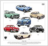goldenera Classic Volvo Print - Amazon, P1800, PV544, 221/222 & 123GT