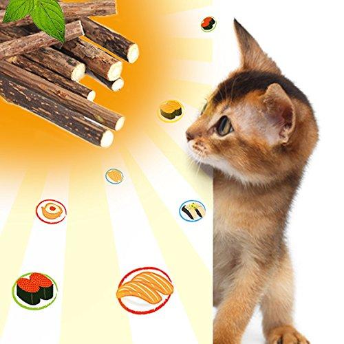 comprare on line PISKY 6 Bastoncini Gatto Giochi per Gatti,Gioco Gatto Catnip Matatabi Sticks,Giocattoli per Gatti Interattivi,Gattino interattivo Giocattolo,Aiutano Giocando Ad Eliminare Alitosi E Tartaro prezzo