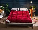 HAOLY Lammfell-matratze,Winter Warme Dicke Bett-krepp,Single Double Falten Sitzkissen,Scorpion-D 90x200cm(35x79inch)
