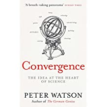 Convergence: The Deepest Idea in the Universe (English Edition)