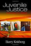 Juvenile Justice: Redeeming Our Children by Barry A. Krisberg (2004-09-13)