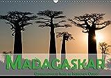 Madagaskar - Geheimnisvolle Insel im Indischen Ozean (Wandkalender 2018 DIN A3 quer): Die Insel Madagaskar im Indischen Ozean verspricht dem Besucher ... Orte) [Kalender] [Apr 15, 2017] Pohl, Gerald
