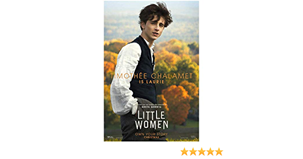 N983 Little Women Movie 2019 Timothée Chalamet Art Poster Silk Print