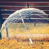 XDWN Parapluie Transparent, Ouvrir automatiquement, Mme, Enfant, Bloquer Le Soleil,...
