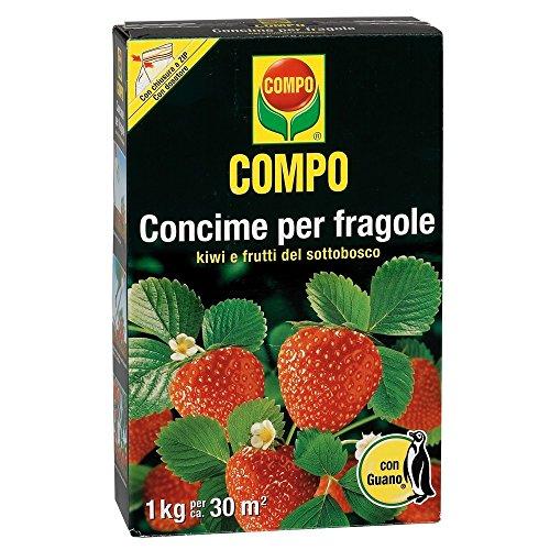 concime-per-fragole-con-guano-in-confezione-da-1-kg