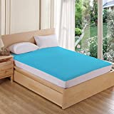 AVI Classic Cotton100% Waterproof/Dustproof Large Twin Size Bed Fitted Mattress Protector- tourquise Blue