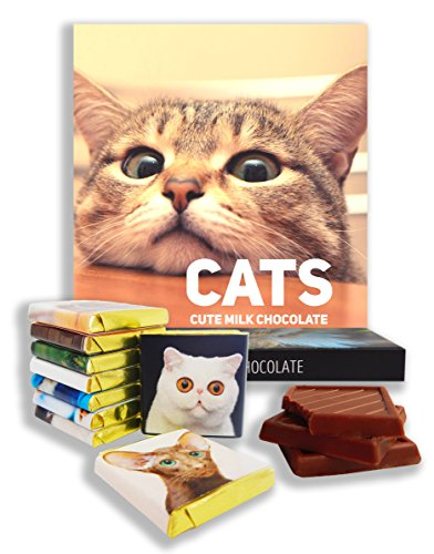 chocolate-gift-set-cats-food-gifts-present-ideas-funny-gift-for-all-cat-lovers-domestic