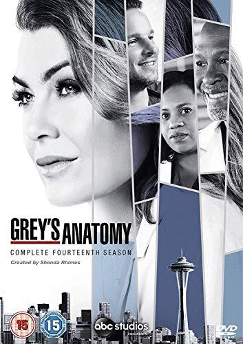 Grey's Anatomy - Series 14