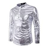 Honghu Herren Casual Regular Fit Lange Ärmel Langarm Button-down Klassischer Hemdkragen Freizeit Hemden Größe L Silber