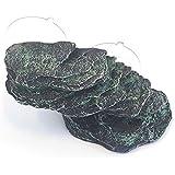 plate-forme de Turtle Island Contactes Rock Reptile vivarium/terrarium/aquarium 62253