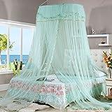 Instalar Continental Cúpula de techo Nets gasa velo Corea Princesa Palacio gratuito ( Color : Verde )