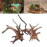 Ueetek Radice di legno naturale Driftwood per decorazione di acquari
