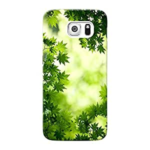 Inkif Printed Designer Case Mobile Back Cover For Samsung Galaxy S6