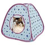 PAWZ Road Katzenzelt Spielzelt Zelt für Katze und Hunde Katzenhaus