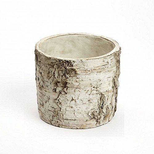 Burgon & Ball nordique en céramique en bouleau écorce Pot de fleurs 3 tailles Taille M