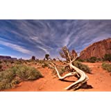 Papiertapete Foto-Tapete Bizarre Wüste KT483 Sand Sonne Landschaft Tapete Fototapete Größe: 420x270cm Kleistertapete Wandbild XXL-Tapete