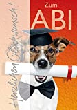 Glückwunschkarte Karte Abitur Zum ABI mit Hund