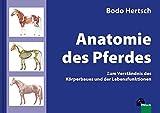 Anatomie des Pferdes: Zum Verständnis des Körperbaues und der Lebensfunktionen