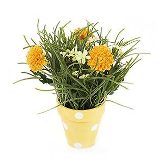 Closer To Nature FP017YC – Planta de crisantemo y jazmín, 27 cm, color amarillo dorado