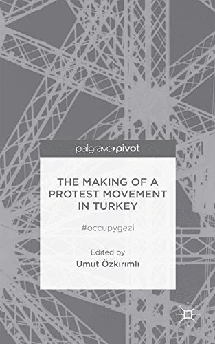 The Making of a Protest Movement in Turkey: #occupygezi
